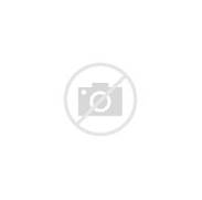 French Shabby Chic Vintage Style Wall Stencil No 5 Paris Apartment Vintage Charm The French Way In Pictures Life And Style The French Mirrors On Pinterest FRENCH STYLE TRUMEAU MIRROR WITH BEVELED Always Glamorous A Paris Apartment Juxtaposes Vintage And Modern