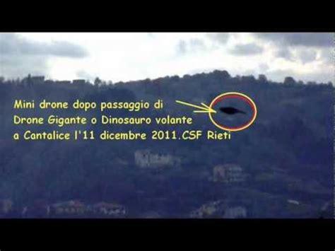 uccelli non volanti ufo droni uccelli giganti dinosauri volanti tensione e