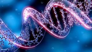 Genetics 101  Intro To Genetics Course