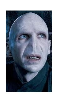 Russeling my way through life.: Lord Voldemort
