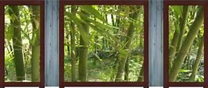 Brise Vue Decoratif Exterieur : brise vue d coratif bamboo livraison gratuit ~ Nature-et-papiers.com Idées de Décoration