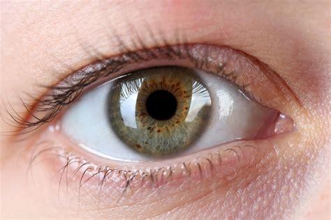 what part of the eye has color kto jest najbardziej nara蠑ony na jaskr苹 oczy polki pl
