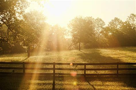 day break dawn sun  photo  pixabay
