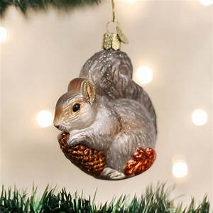 Hungry, Squirrel, Ornament