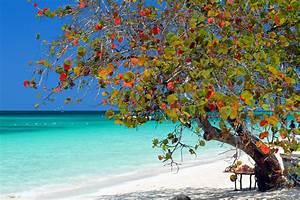 Bilder Am Strand : bilder die sch nsten str nde der karibik franks travelbox ~ Watch28wear.com Haus und Dekorationen