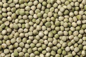 Seed Saving: Peas | Save Your Own Pea Seed - Allotment ...
