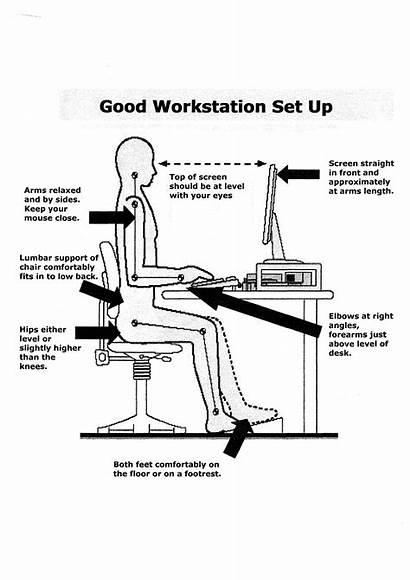 Dse Workstation Ergonomics Health Office Safety Assessment