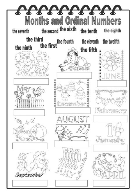 months  ordinal numbers interactive worksheet