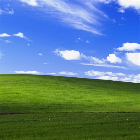2048x2048 Windows Xp Bliss 4k Ipad Air Hd 4k Wallpapers