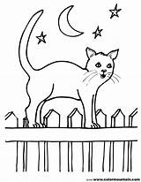 Coloring Fence Cat Popular sketch template