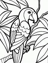 Coloring Pages Luau Popular sketch template