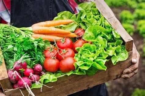 Produktet bio ushqejnë organizmin