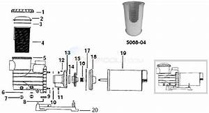 Wiring Diagram  30 Jacuzzi Pool Pump Parts Diagram