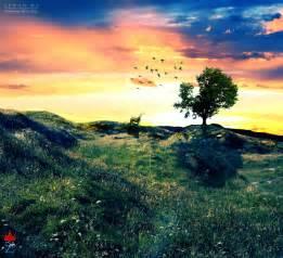 Photos of Nature: Photos Of Peaceful Nature