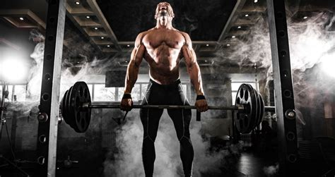 essential  weights exercises   workouts