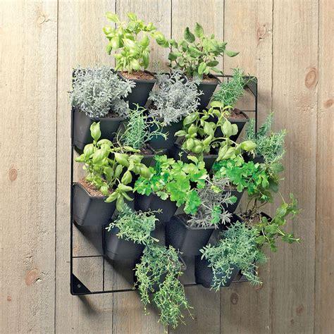 vertical wall garden  green head