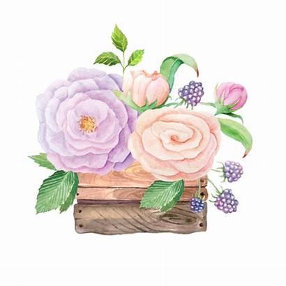 Flowers Fleurs Zezete2 Centerblog Basket Bloemen Flores