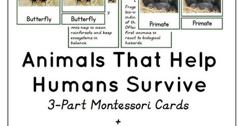 how do animals help humans animals that help humans survive earth day activity montessori cards montessori inspired