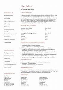 References Examples For Resumes Entry Level Resume Templates Cv Jobs Sample Examples