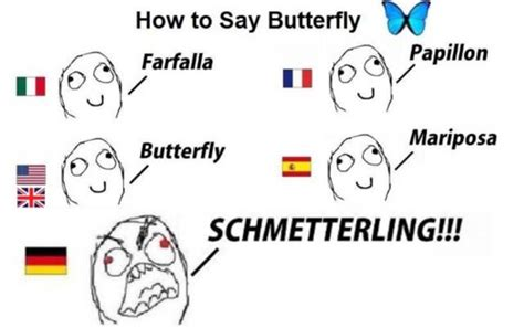 German Butterfly Meme - it s just german funny pictures