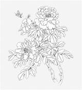 Peony Coloring Pages sketch template