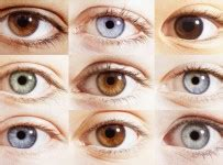 how to change eye color with honey how to change your eye color with honey does honey change