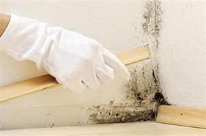 Muffiger Geruch Im Keller : luftentfeuchter bautrockner raumklima ~ Lizthompson.info Haus und Dekorationen