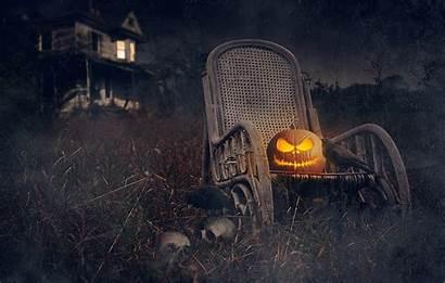Halloween Skeleton Skull Background Skulls Pumpkin Dark