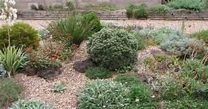 Gräser Für Gartengestaltung : kiesgarten steine gr ser bunte blumen mein sch ner garten ~ Sanjose-hotels-ca.com Haus und Dekorationen