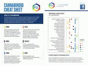 Drug Test Pass Chart Cannabinoid Cheat Sheet Full Spectrum Labs Marijuana