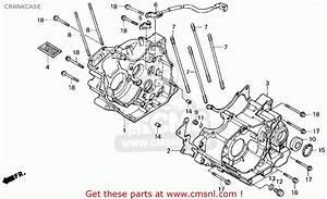 1986 Honda Fourtrax 200sx Parts