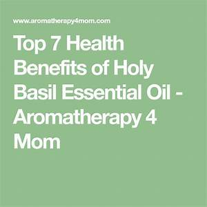 Top 7 Health Benefits Of Holy Basil Essential Oil