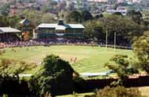 North Sydney Bears Fixtures History and Club Information