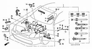 2001 honda prelude engine diagram wiring diagrams image With prelude wiring diagram free engine schematic all about wiring