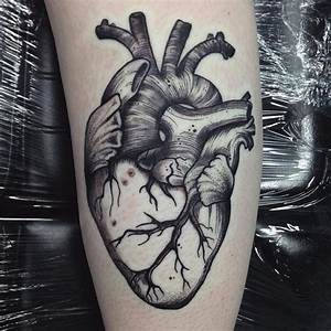 Anatomical Heart Tattoo - Tattoo Collections