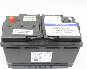 Genuine BATTERY Parts 31296299