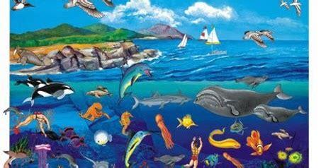 ocean ecosystem  kids childhood education