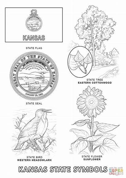 Coloring Kansas Pages State Symbols Printable Drawing