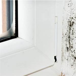 Wieviel Kosten Neue Fenster : fenster beschlagen von innen kondenswasser vermeiden ~ Sanjose-hotels-ca.com Haus und Dekorationen