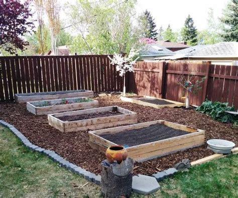 build raised beds     diy