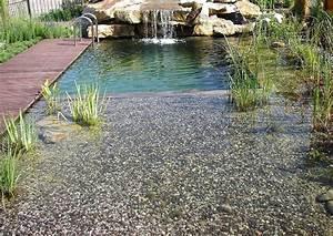 Gartenteich Gestalten Bilder : schwimmteich anlegen worauf kommt es an ~ Whattoseeinmadrid.com Haus und Dekorationen