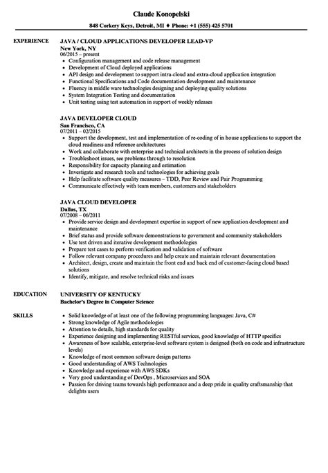 22423 sle java developer resume 11 career objective