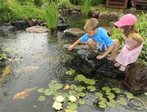 fl fish pond water garden contractortitusville space