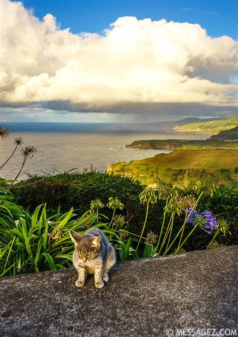 portugal azores islands landscape photography  messagez
