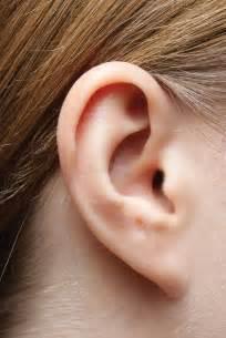 big earing cirrus healthcare earplanes bioears und clearears