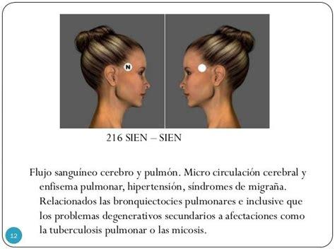 216 SIEN – SIEN Flujo sanguíneo cerebro y pulmón. Micro ...