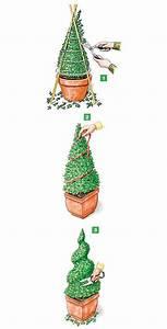 Eibe Schneiden Beste Zeit : die 25 besten buchsbaum schneiden ideen auf pinterest buchsbaum buchsbaum garten und ~ Frokenaadalensverden.com Haus und Dekorationen