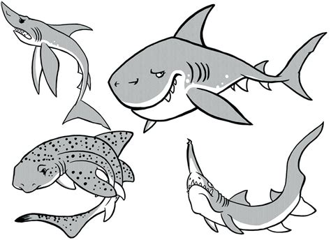 Megalodon Shark Coloring Pages At Getcolorings.com