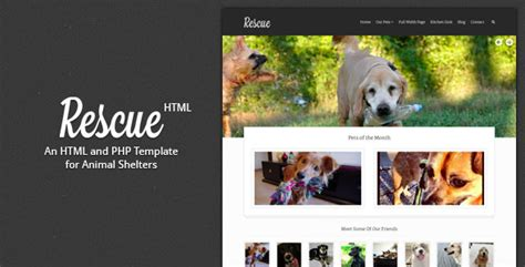 rescue animal shelter html template  designcrumbs