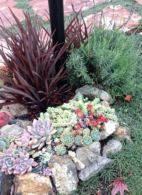 succulent flower bed 1000 images about circular flower bed on pinterest how to landscape succulents and focal points